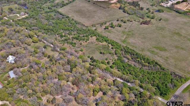 000 Mill Run Road, Athens, TX 75751 (MLS #10137874) :: Griffin Real Estate Group