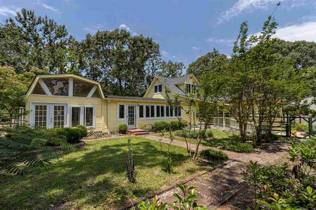 410 Vz County Road 4903, Ben Wheeler, TX 75754 (MLS #10137881) :: Griffin Real Estate Group