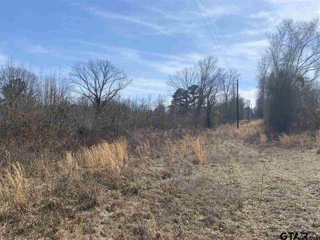 TBD Cr 444, Lindale, TX 75771 (MLS #10137887) :: Griffin Real Estate Group