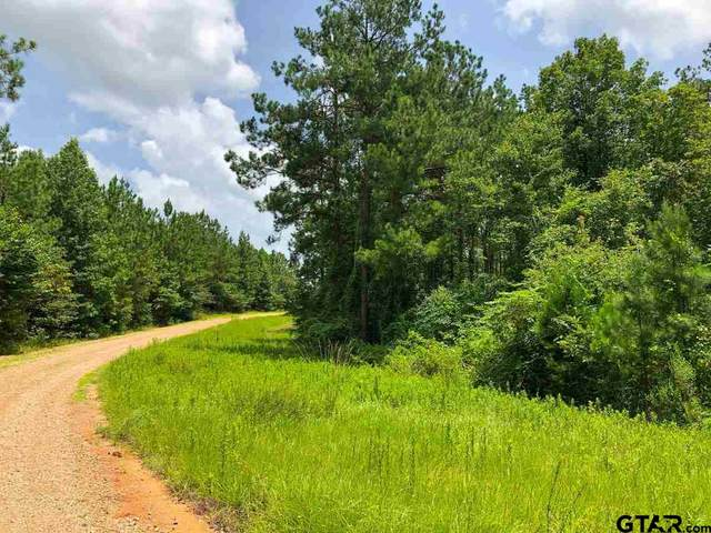 0 Cr 444, Chireno, TX 75937 (MLS #10137892) :: Griffin Real Estate Group