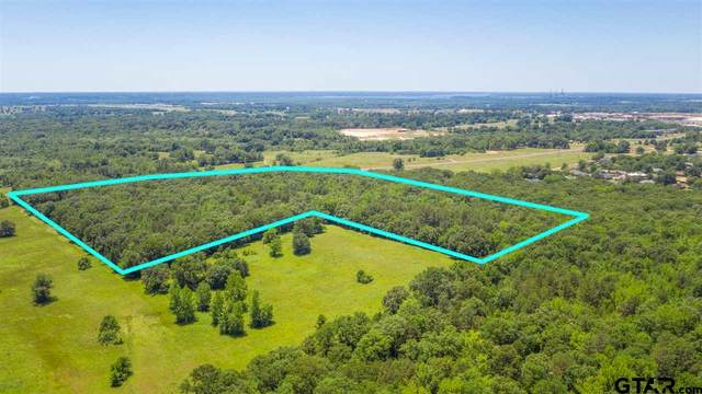 000 Fm 4000, Mt Pleasant, TX 75455 (MLS #10137904) :: Griffin Real Estate Group
