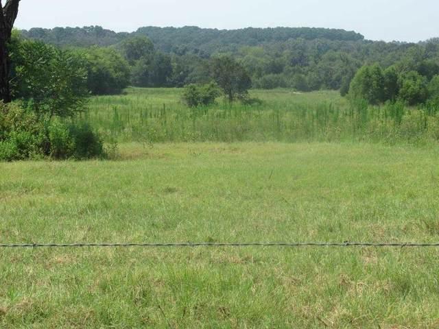 7 AC Cr 152 W, Bullard, TX 75757 (MLS #10138084) :: Wood Real Estate Group