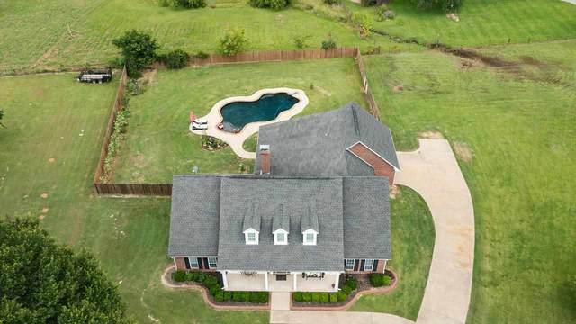 11416 County Road 1259, Flint, TX 75762 (MLS #10138193) :: Wood Real Estate Group