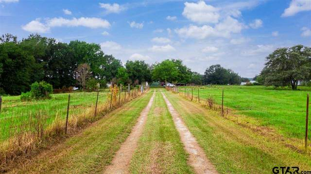 10360 County Rd 3168, Winona, TX 75792 (MLS #10138398) :: Wood Real Estate Group