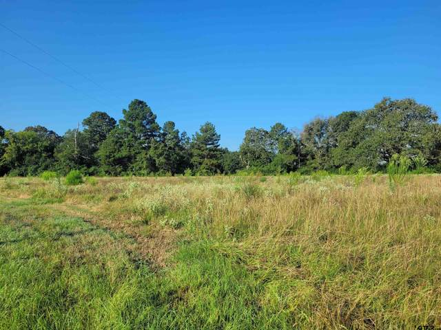 22443 County Road 2166, Troup, TX 75789 (MLS #10139362) :: The Edwards Team