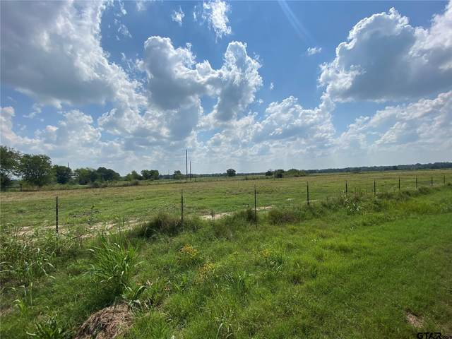 Tract 1 County Road 4769, Sulphur Springs, TX 75482 (MLS #10139649) :: RE/MAX Professionals - The Burks Team