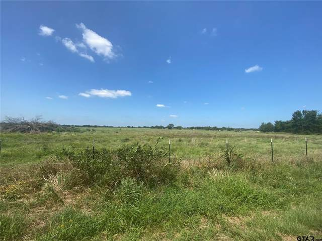 Tract 3 County Road 4769, Sulphur Springs, TX 75482 (MLS #10139660) :: RE/MAX Professionals - The Burks Team