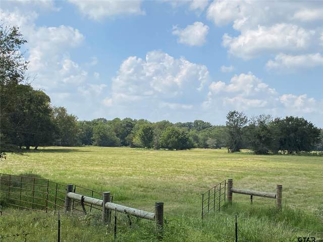 Tract 5 County Road 4769, Sulphur Springs, TX 75482 (MLS #10139662) :: RE/MAX Professionals - The Burks Team