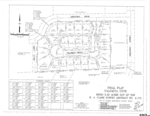 112 Palomita Circle, Athens, TX 75752 (MLS #10139857) :: RE/MAX Professionals - The Burks Team