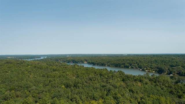 3934 County Road 3108, Jacksonville, TX 75766 (MLS #10140176) :: Griffin Real Estate Group