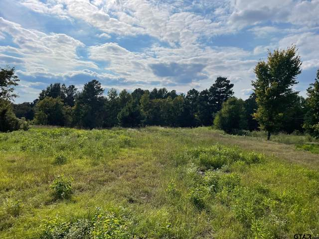 TBD 2.8 Acres North Point Pleasant Rd, Gladewater, TX 75647 (MLS #10140265) :: The Edwards Team