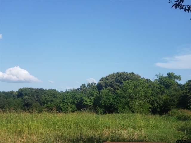 TBD Farm Road 71 E, Dike, TX 75437 (MLS #10140385) :: The Edwards Team