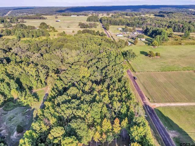 11054 County Road 4103 (Lot 7), Lindale, TX 75771 (MLS #10140471) :: RE/MAX Professionals - The Burks Team