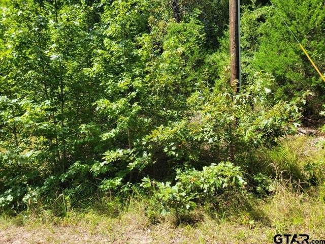 TBD Wild Wood St., Murchison, TX 75778 (MLS #10140543) :: Griffin Real Estate Group
