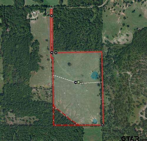 438 County Rd 4106, Jacksonville, TX 75766 (MLS #10140626) :: The Edwards Team