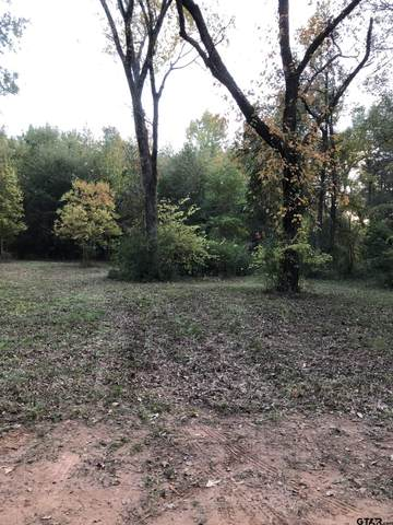 Willingham Road, Whitehouse, TX 75791 (MLS #10140636) :: Griffin Real Estate Group