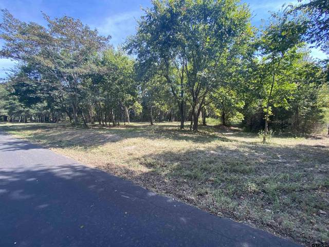 0000 Cr 2382, Mineola, TX 75773 (MLS #10140699) :: Griffin Real Estate Group