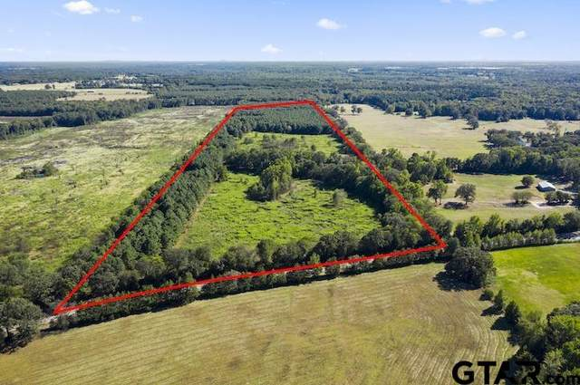 TBD Fm 1519, Pittsburg, TX 75686 (MLS #10140737) :: Griffin Real Estate Group