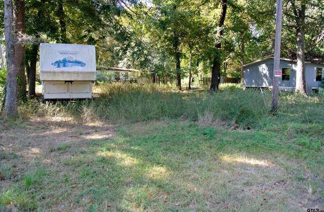 16829 Lakeway Circle, Flint, TX 75762 (MLS #10140742) :: Griffin Real Estate Group