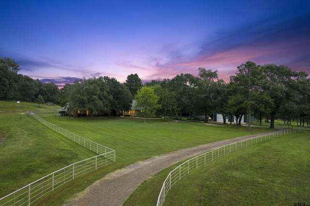 307 County Road 4307, Naples, TX 75568 (MLS #10140748) :: Griffin Real Estate Group