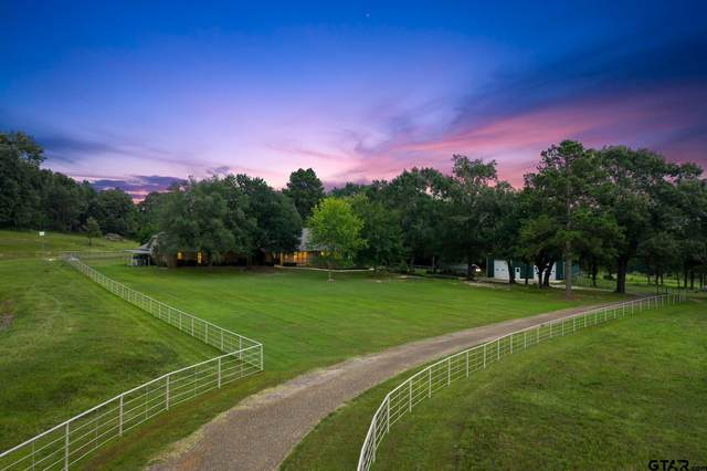 307 County Road 4307, Naples, TX 75568 (MLS #10140842) :: Griffin Real Estate Group