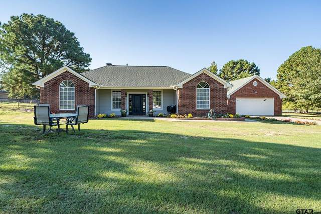 11991 County Road 46, Tyler, TX 75704 (MLS #10141371) :: Dee Martin Realty Group