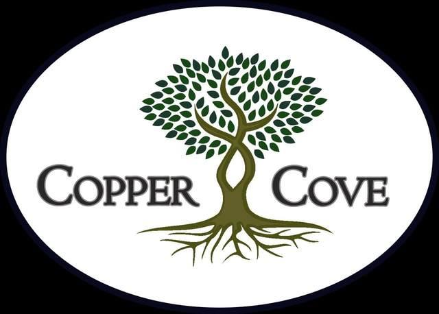5617 Copper Park, Tyler, TX 75703 (MLS #10141376) :: RE/MAX Professionals - The Burks Team