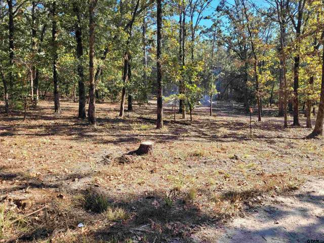 23508 Overview Dr., Mineola, TX 75773 (MLS #10141385) :: Dee Martin Realty Group