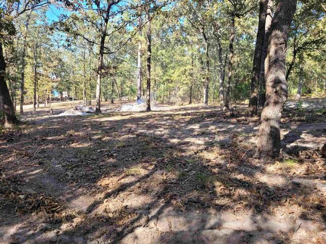 TBD Overview Dr., Mineola, TX 75773 (MLS #10141386) :: Dee Martin Realty Group
