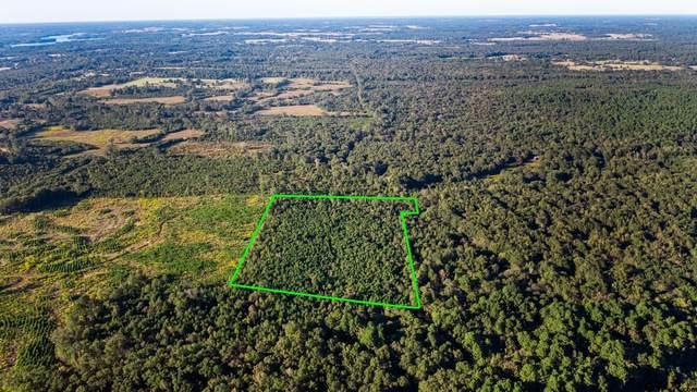 TBD CR 1200 Margaret Johnson, Daingerfield, TX 75638 (MLS #10141408) :: Griffin Real Estate Group
