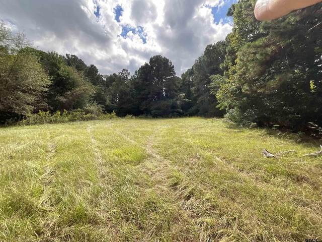 TBD Paschal, Troup, TX 75789 (MLS #10141578) :: Dee Martin Realty Group
