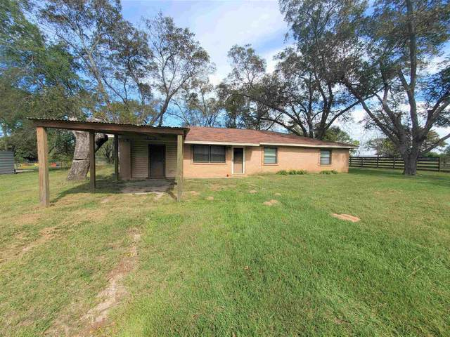380 Cr 313 W, Tyler, TX 75706 (MLS #10141687) :: Griffin Real Estate Group