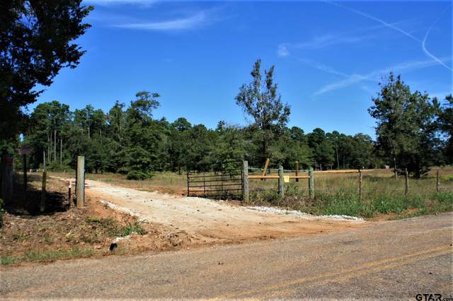 22498 C R 2144, Troup, TX 75789 (MLS #10141880) :: Wood Real Estate Group