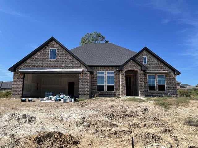 4215 Chapel Circle, Tyler, TX 75707 (MLS #10141899) :: Dee Martin Realty Group