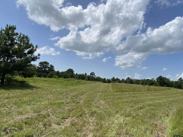 Cr 1310, Jacksonville, TX 75766 (MLS #10141901) :: Wood Real Estate Group