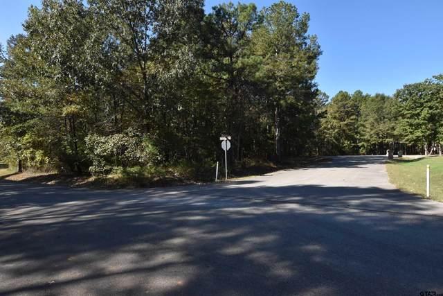 14840 & 14846 Hazel Leaf Ct, Tyler, TX 75707 (MLS #10141921) :: Dee Martin Realty Group