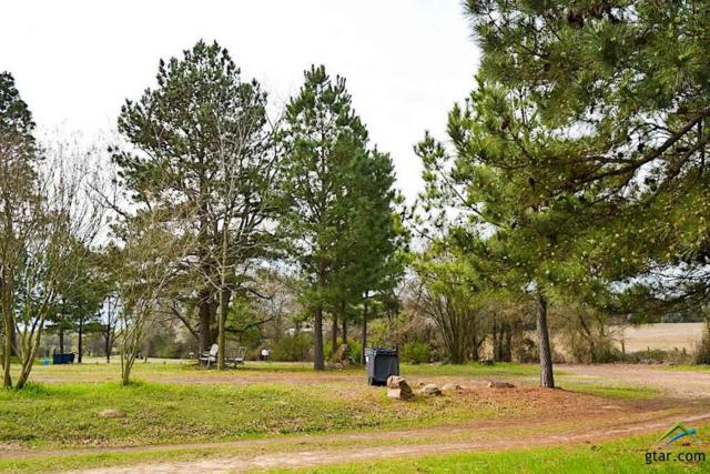 688 County Road 3352, Saltillo, TX 75478 (MLS #10079149) :: RE/MAX Professionals - The Burks Team