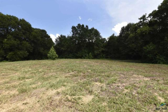 2620 Vz Cr 1514, Grand Saline, TX 75140 (MLS #10082865) :: RE/MAX Professionals - The Burks Team