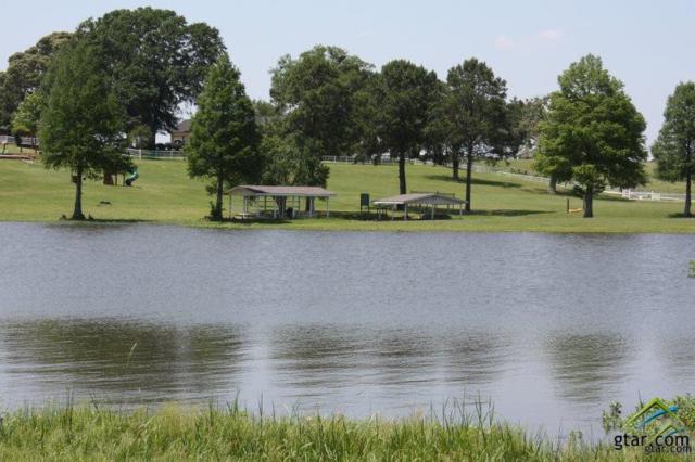 LOT 29 Caddo Creek Circle, Larue, TX 75770 (MLS #10084384) :: RE/MAX Professionals - The Burks Team