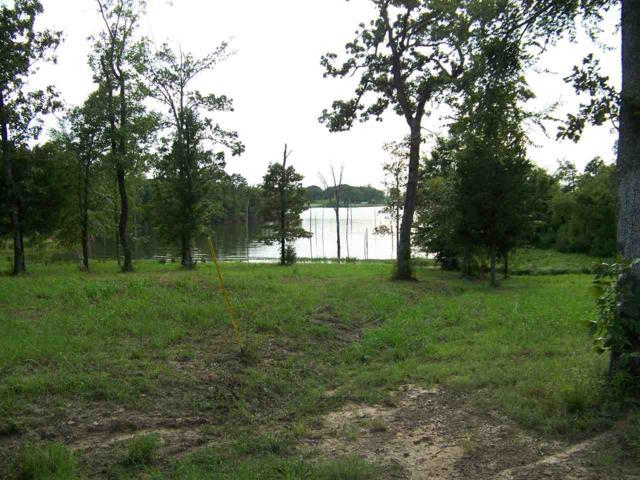 1064 Little River Bend, Quitman, TX 75783 (MLS #10085386) :: The Wampler Wolf Team