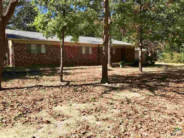 16123 County Road 431, Lindale, TX 75771 (MLS #10087872) :: RE/MAX Professionals - The Burks Team