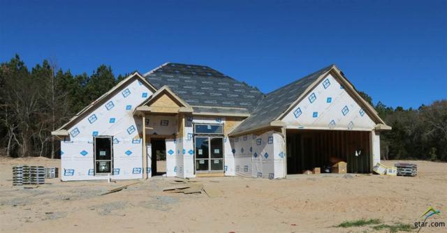 4146 Chapel Quarters, Tyler, TX 75707 (MLS #10089144) :: RE/MAX Impact
