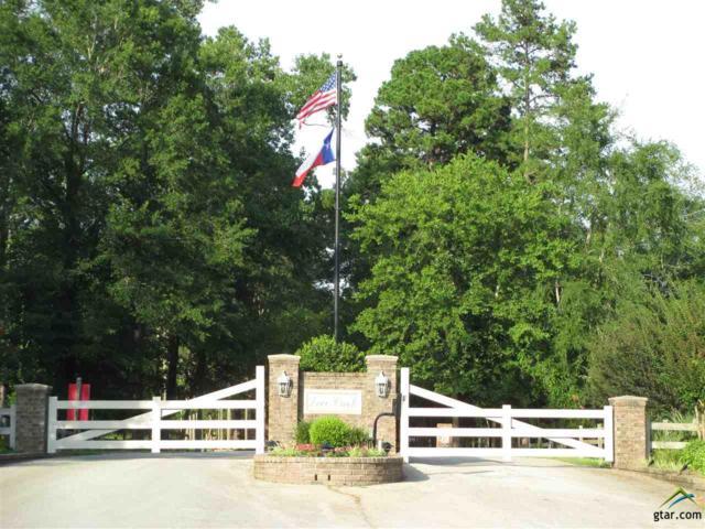 15042 Canopy Oaks, Tyler, TX 75707 (MLS #10089678) :: RE/MAX Professionals - The Burks Team