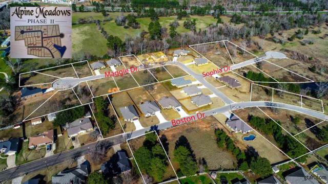 2105 Sophia Drive, Longview, TX 75601 (MLS #10091810) :: Griffin Real Estate Group
