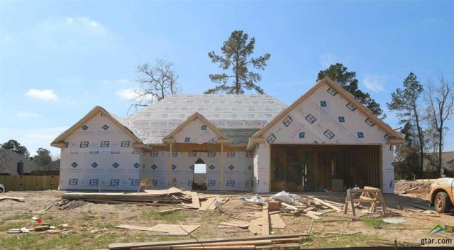 4141 Chapel Ridge, Tyler, TX 75707 (MLS #10092099) :: RE/MAX Impact