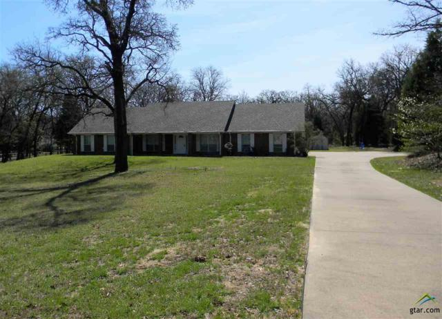 7443 Dogwood Trail, Athens, TX 75751 (MLS #10092518) :: The Wampler Wolf Team