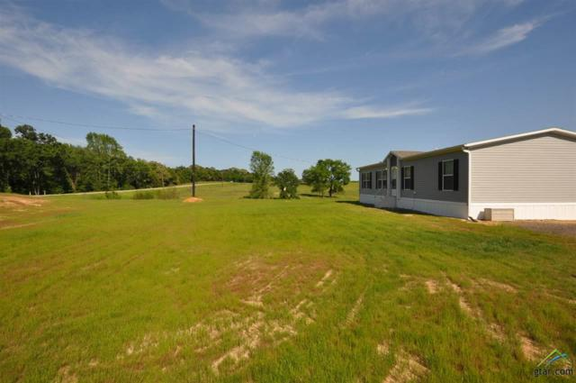 10115 Fm 2339, Ben Wheeler, TX 75754 (MLS #10093267) :: RE/MAX Impact