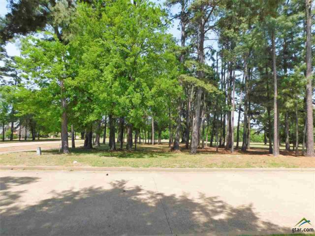 101 Whispering Pines, Bullard, TX 75757 (MLS #10093276) :: RE/MAX Professionals - The Burks Team