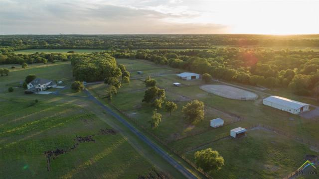 9797 Cr 312, Terrell, TX 75160 (MLS #10093986) :: The Wampler Wolf Team