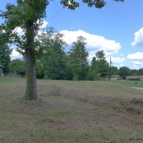 TBD Bob White Dr, Gilmer, TX 75644 (MLS #10097797) :: The Wampler Wolf Team